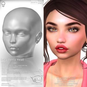 CATWA HEAD Lona Ad2