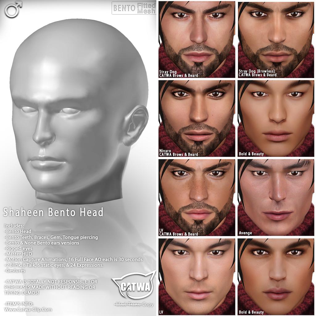 Facial expressions gestures